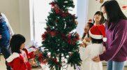 Christmas 2018 – Tree B05