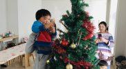 Christmas 2018 – Tree B09
