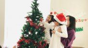 Christmas 2018 – Tree B06