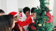 Christmas 2018 – Tree B07