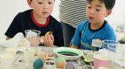 Easter 2019 – Egg Dye A20